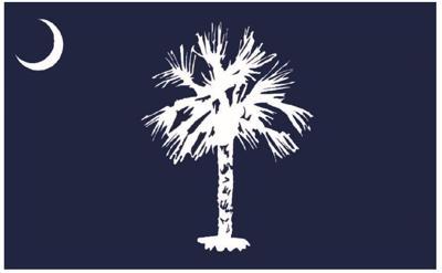 South Carolina's new proposed state flag. (copy) (copy) (copy)