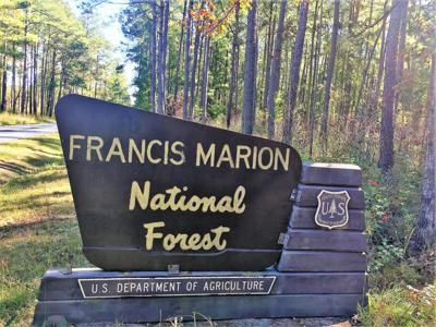 Francis Marion