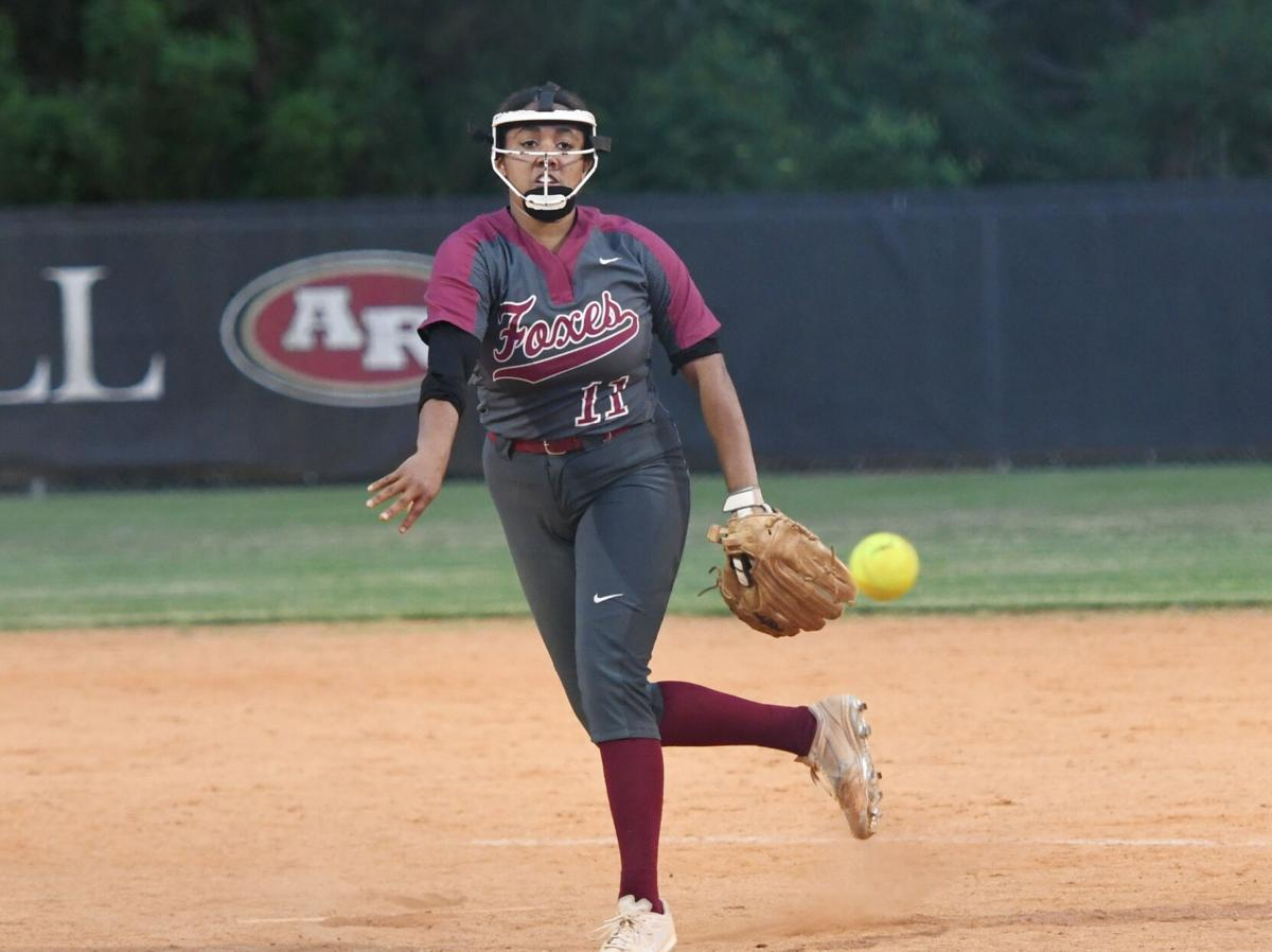 Softball players receive all-state honors