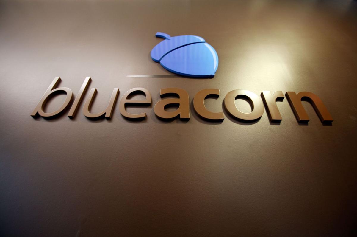 Tech firm Blue Acorn cutting jobs