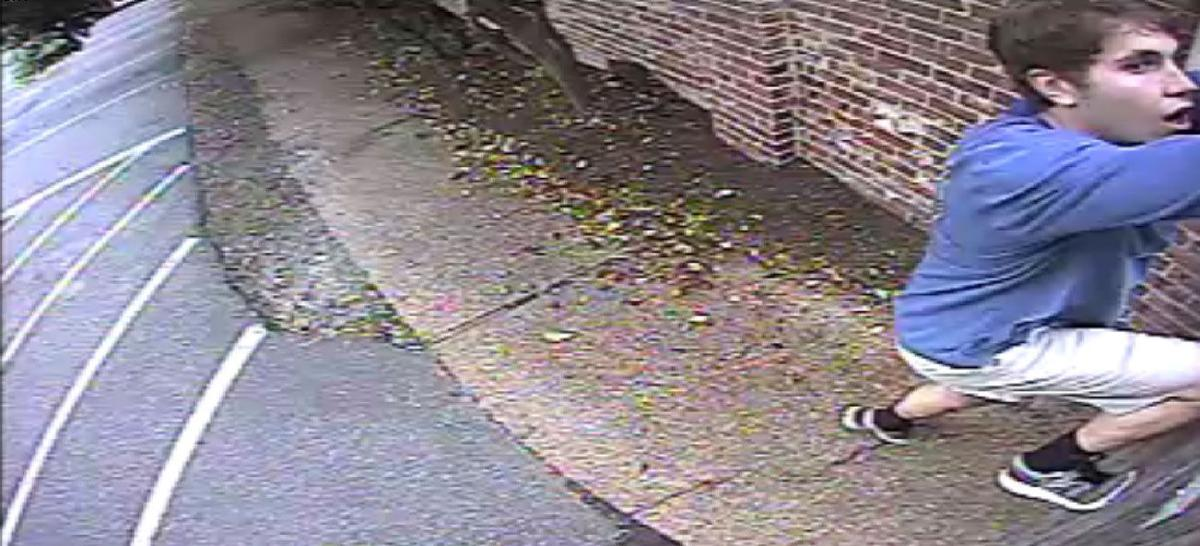 Charleston police seek graffiti suspect