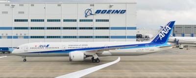 All Nippon 787-10 (copy)