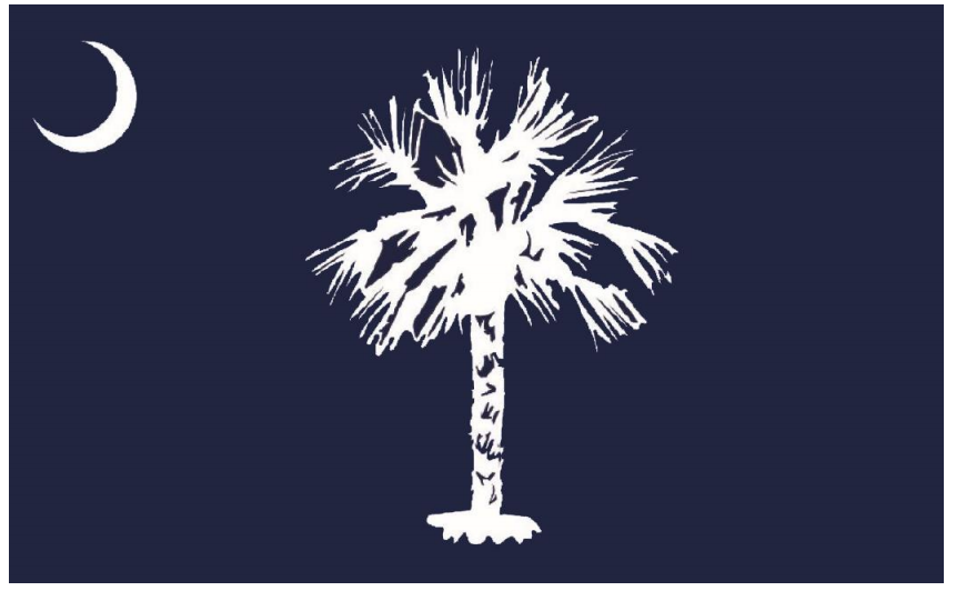 South Carolina's new proposed state flag.