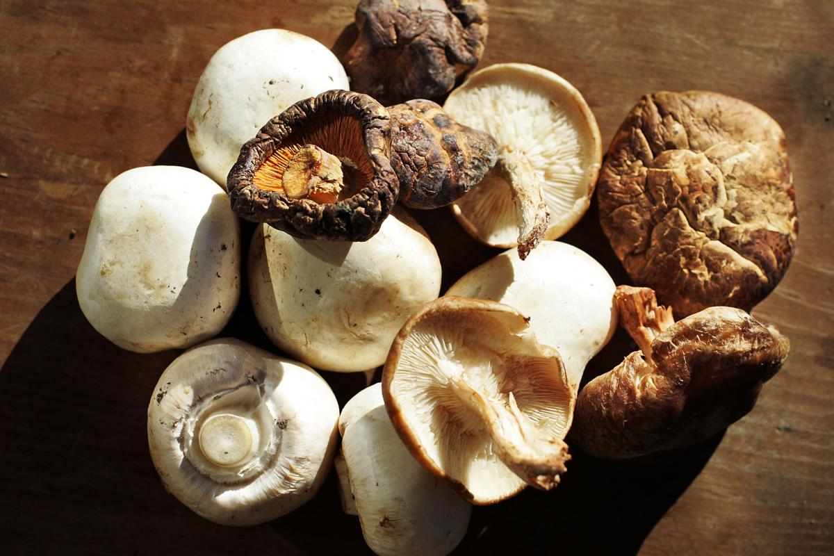 Mushrooms take center stage in these recipes