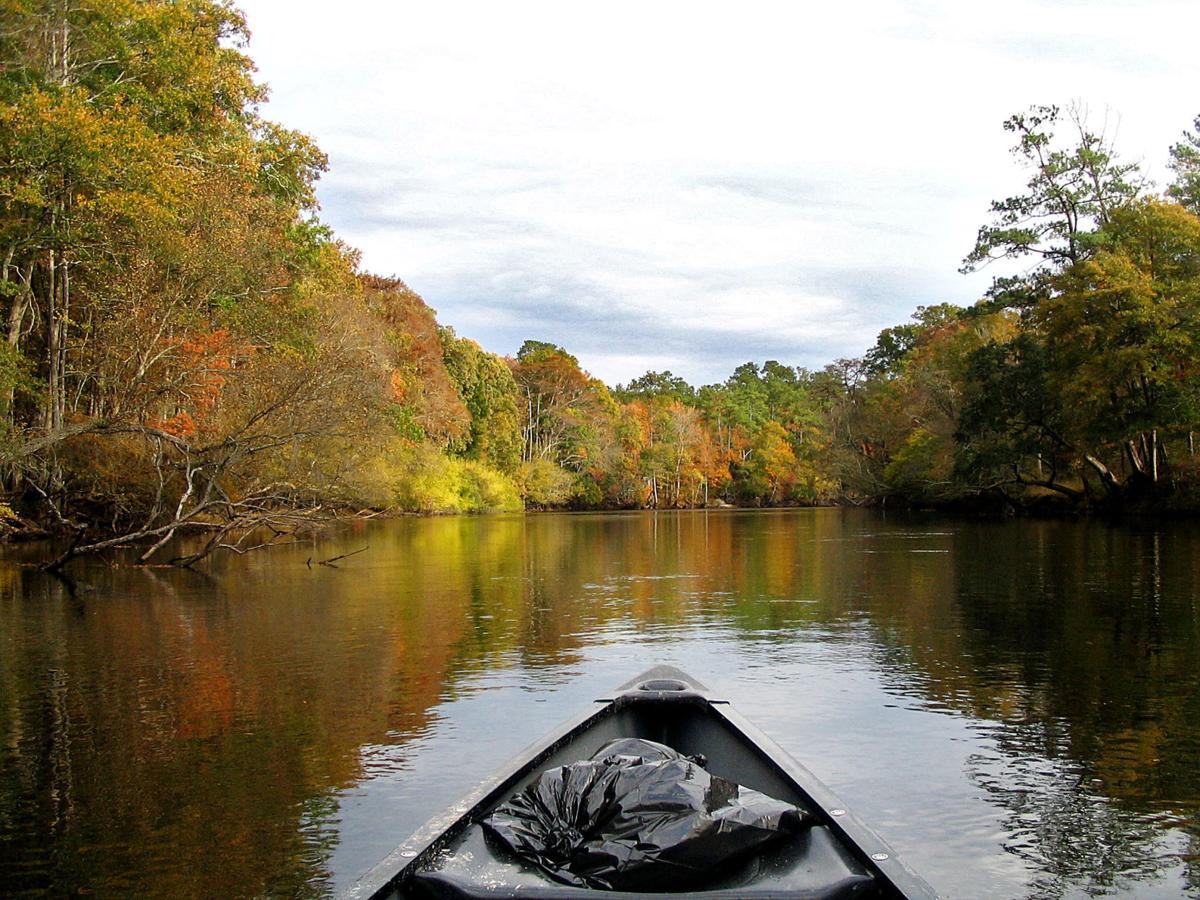 South Carolina's treasured rivers need protection