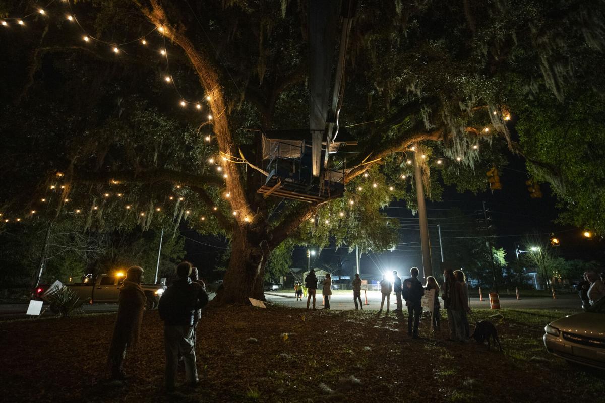 protestors under tree.jpg