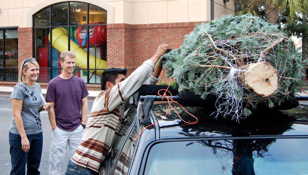 It's time for trees: Last-year pricing adds to Christmas cheer