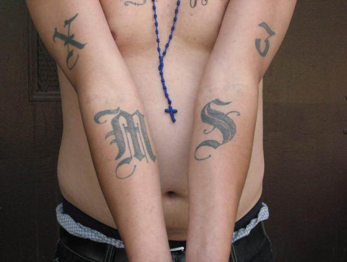 MS-13 gang crackdown