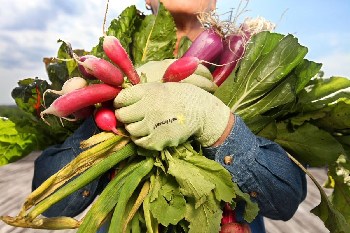 Season is yourguide Fresh vegetables, making the time are keys