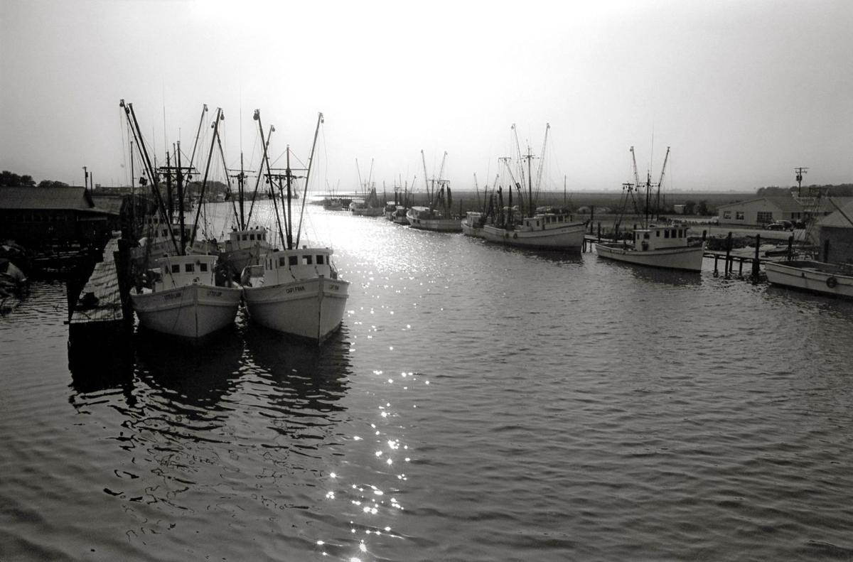Shem Creek remembered as an idyllic shrimpers haunt
