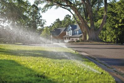 Irrigation meters can save money