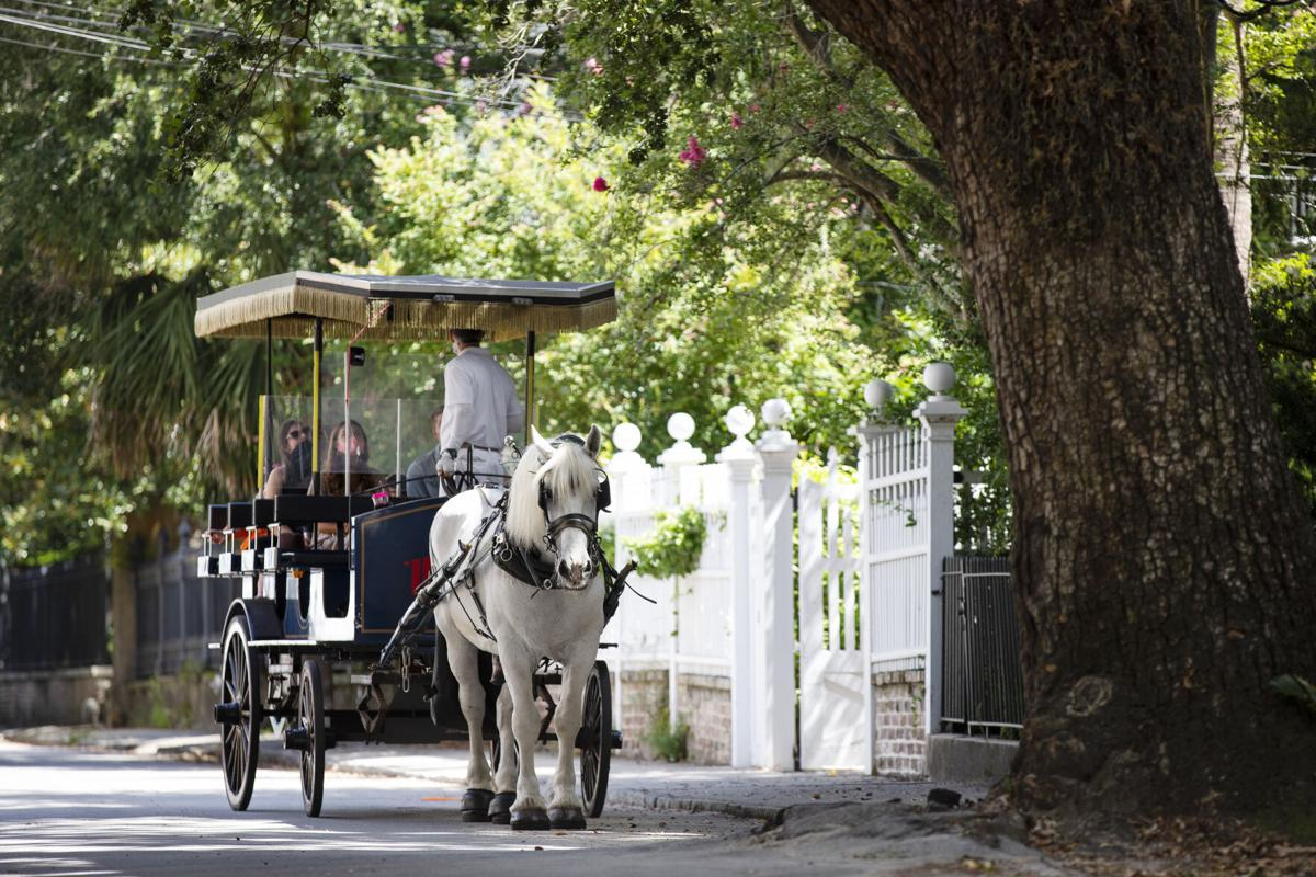 horse carriage.jpg (copy)