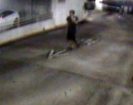 Man exposes self in Charleston parking garage, woman tells police