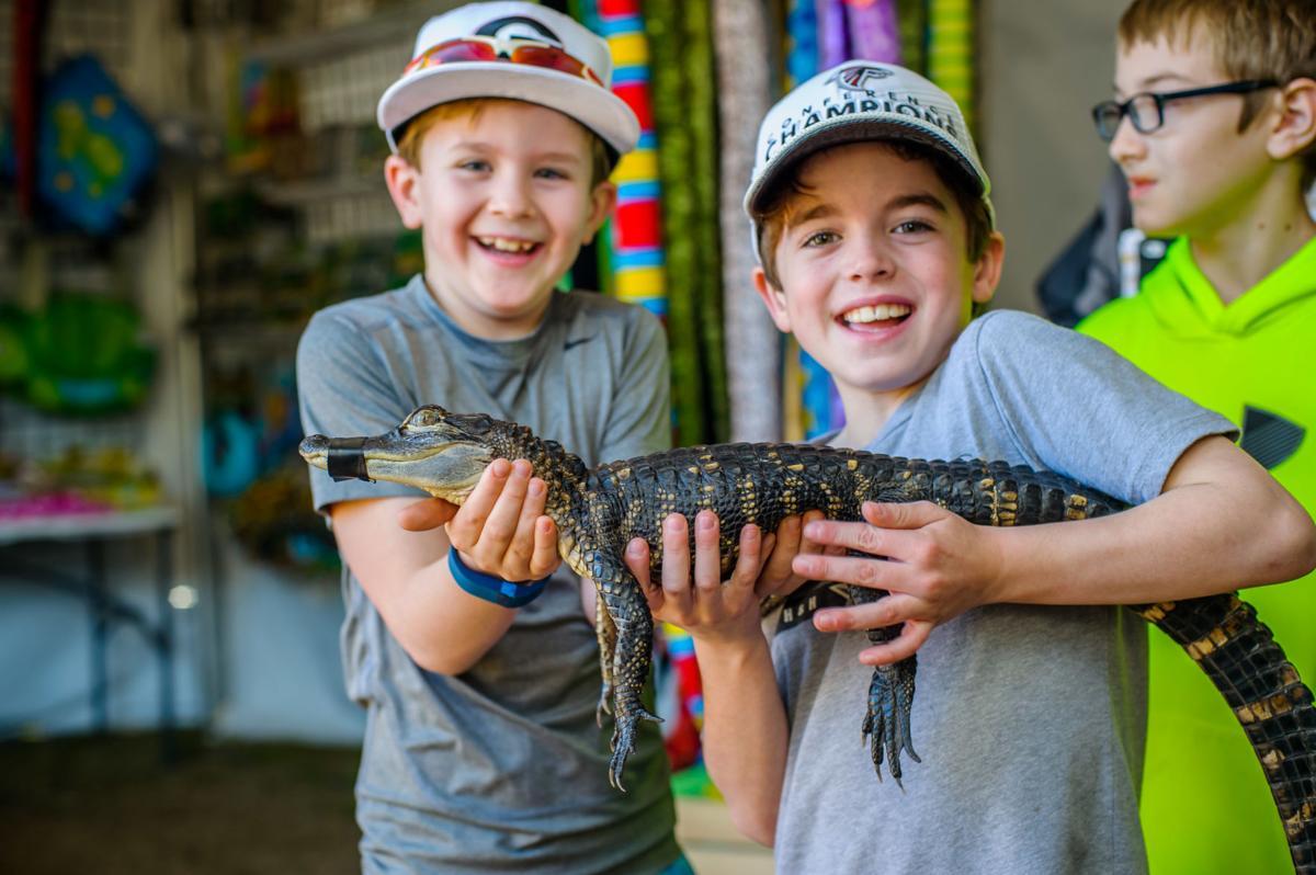 Boys and gator