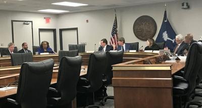 SC Senate redistricting panel