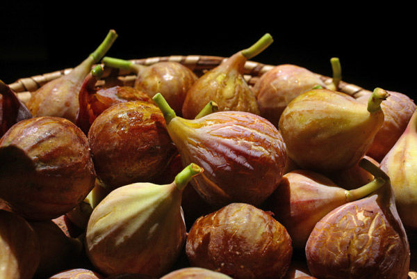 TAYLOR COLUMN: Figs can be made into preserves, brandied