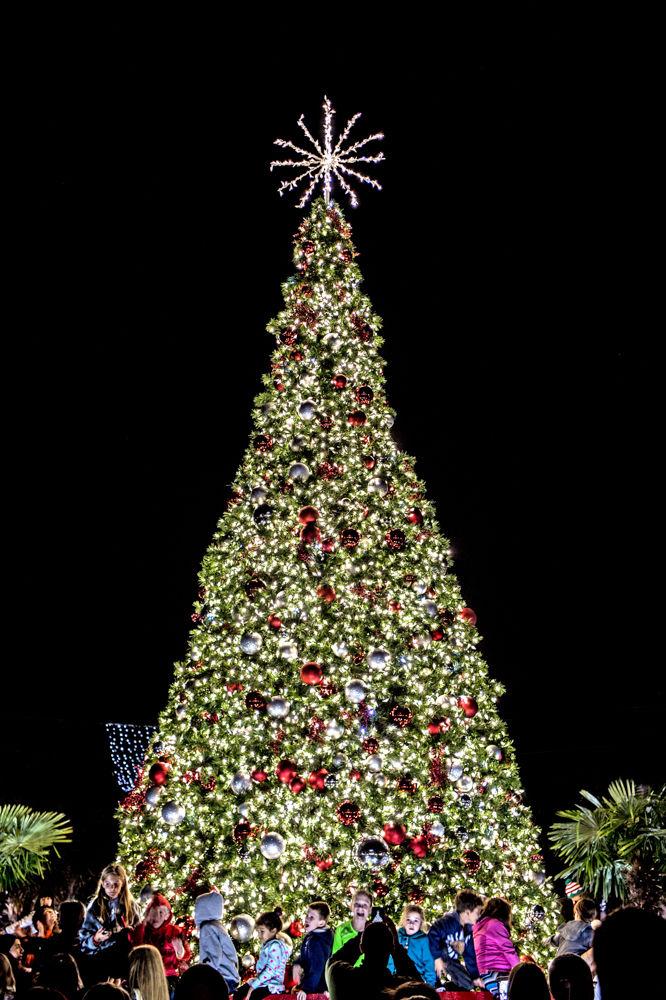 Hicks column Whats on your Christmas wish list South Carolina