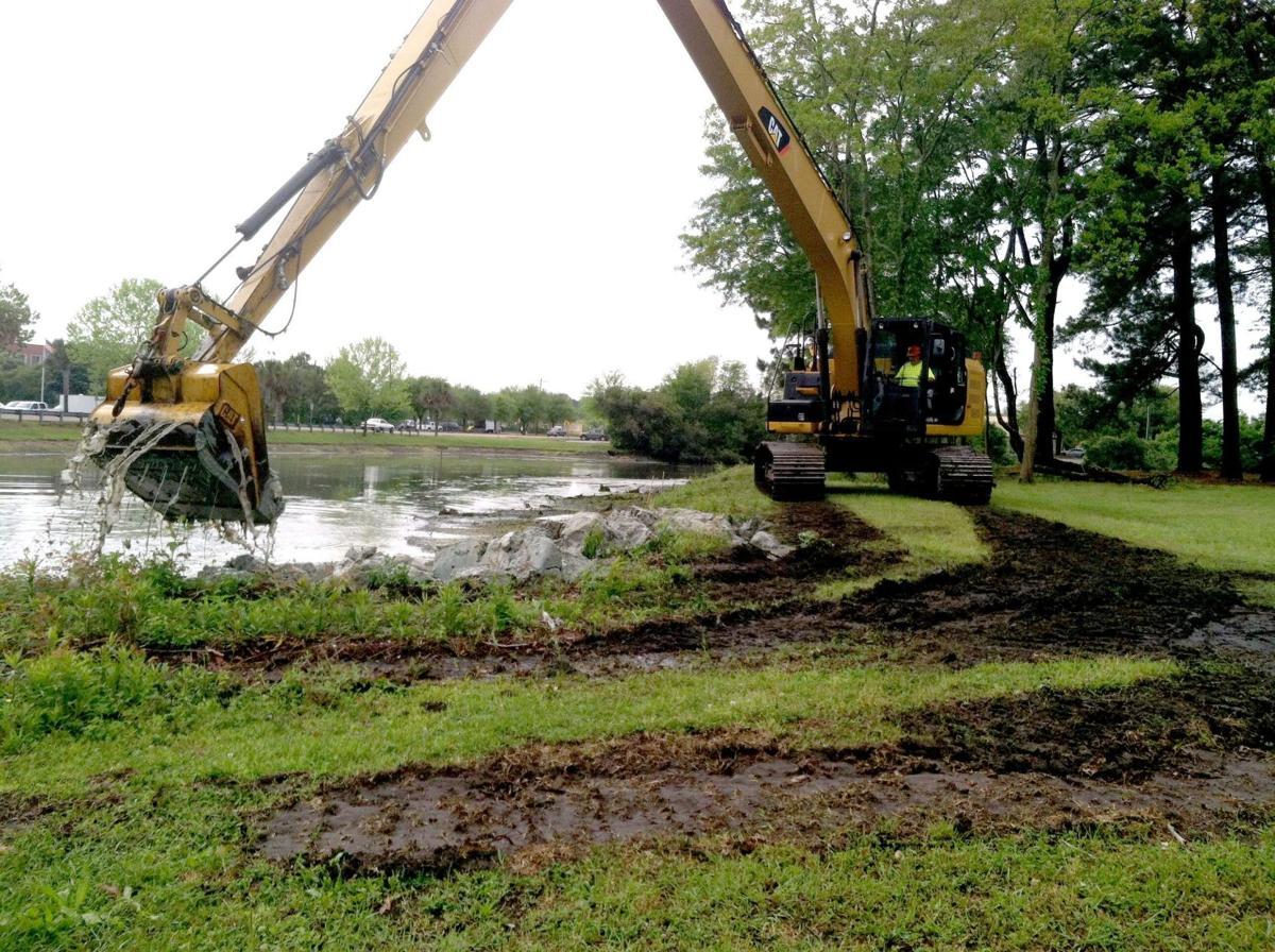 Popular wading bird pond to lose last wax myrtles