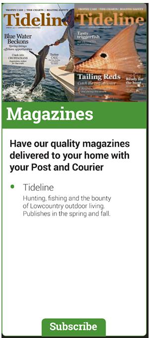 Access e-edition   site   postandcourier. Com.