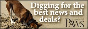 Deals & News