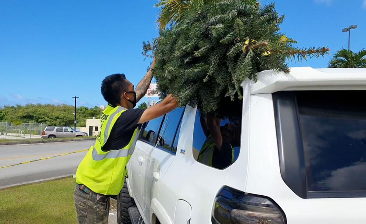 Shoppers begin taking home their Christmas trees