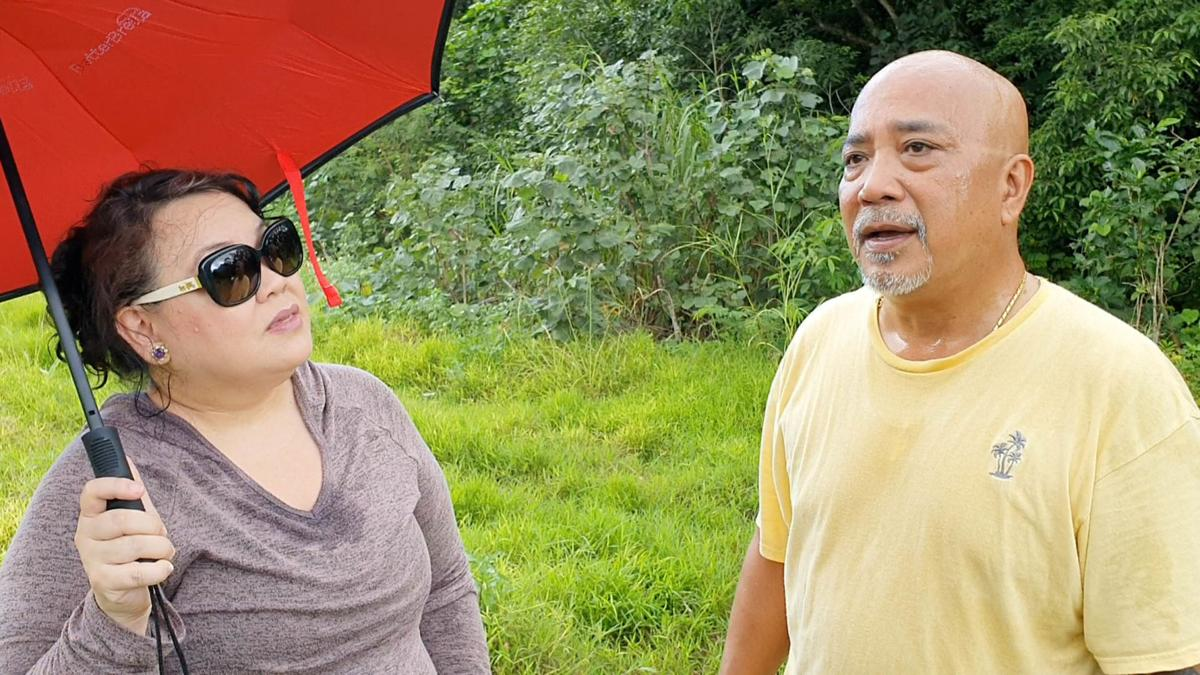 Couple seeks removal of concrete slabs from land