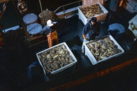 No crabs, no scallops: Seafood is vanishing from menus in U.S.