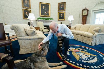 Biden has had his dog days; Now he'll join club of 'cat people' world leader