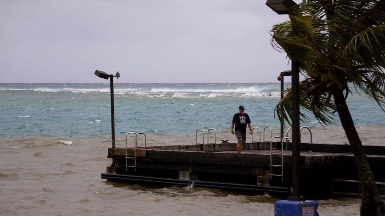 Stormwater runoff, box jellyfish make swimming unsafe this