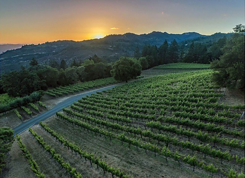 Threatened by climate change, a California winemaker switches to carbon farming