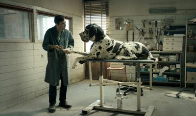 Bullied dog groomer heads down predictable path in doleful 'Dogman'