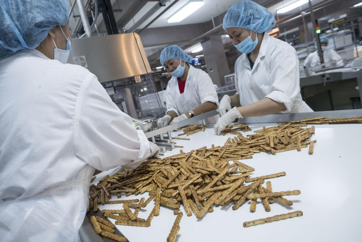 Workers sort asparagus biscuits