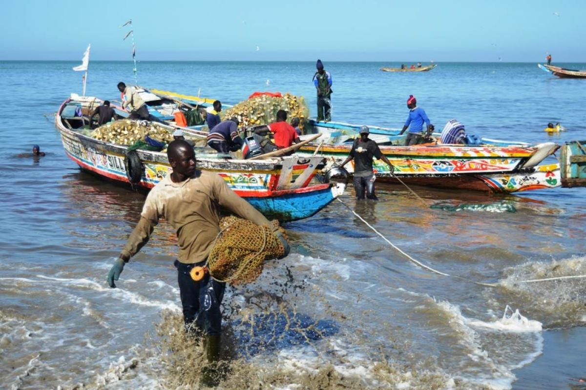 Foreign fishing fleets drain West African waters 2