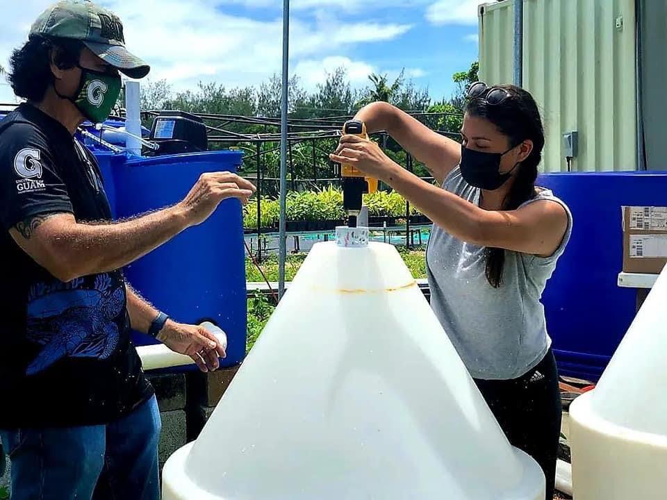 Guam Green Growth, UOG offer aquaponics training