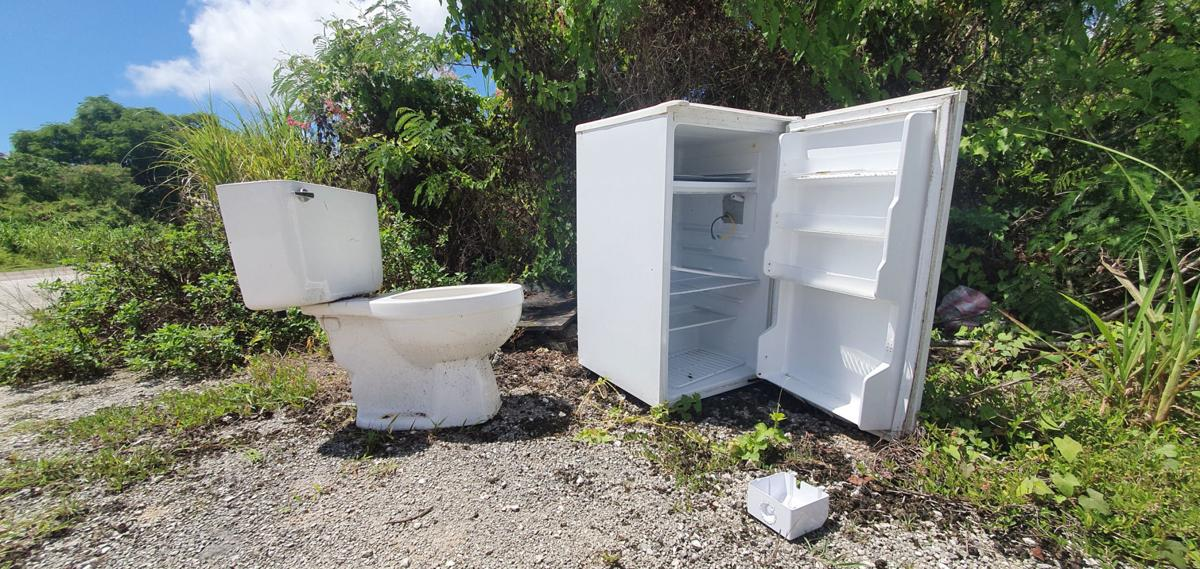 Increase enforcement, fines to curb illegal dumping