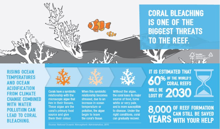 how to protect the great barrier reef from climate change