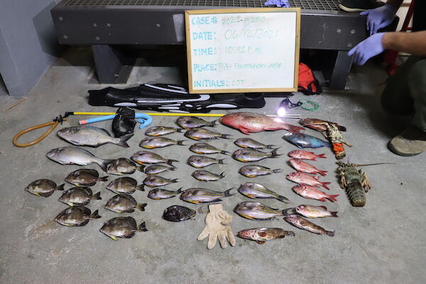 2 men arrested for allegedly spearfishing in marine preserve