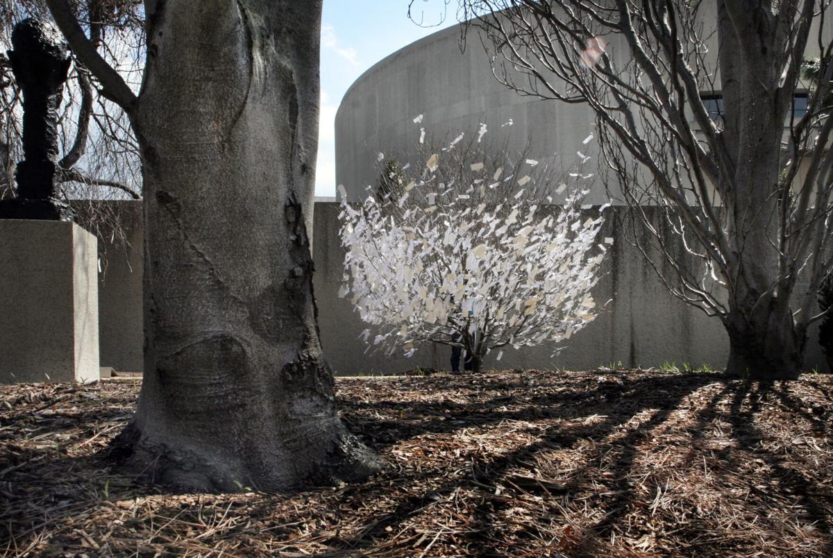 Yoko Ono's 'Wish Tree' is branching out