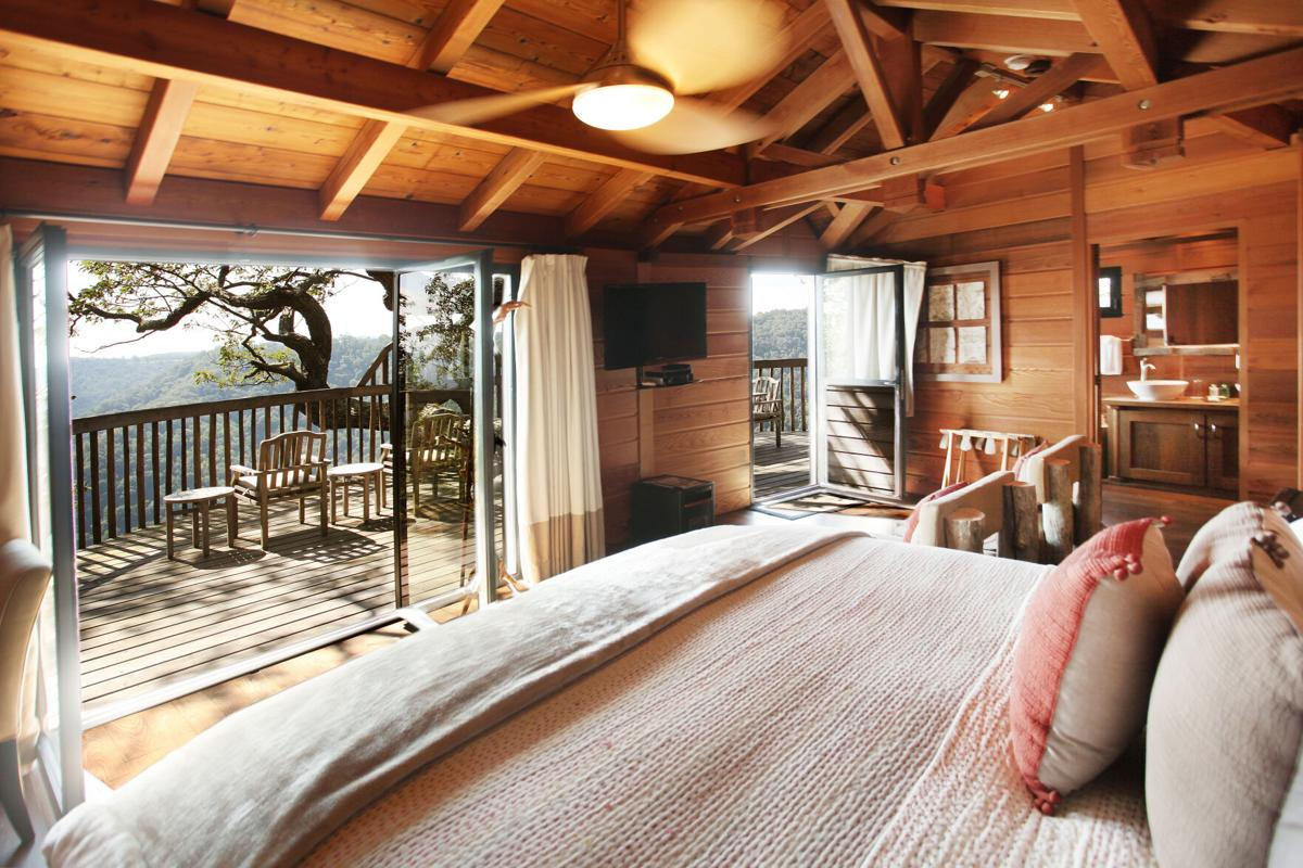 Vacationers are flocking to treehouses