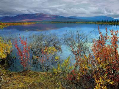 Plan to open drilling in Alaska refuge OK'd