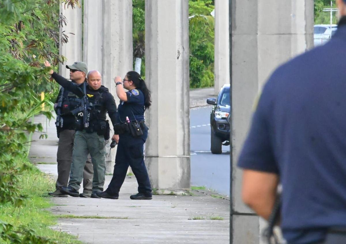 Woman killed in stabbing