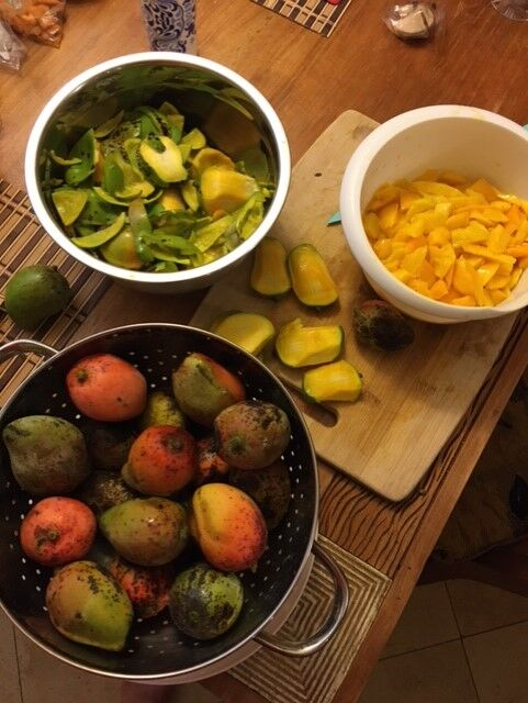 The Battle of the Mango Cobblers, Part 1