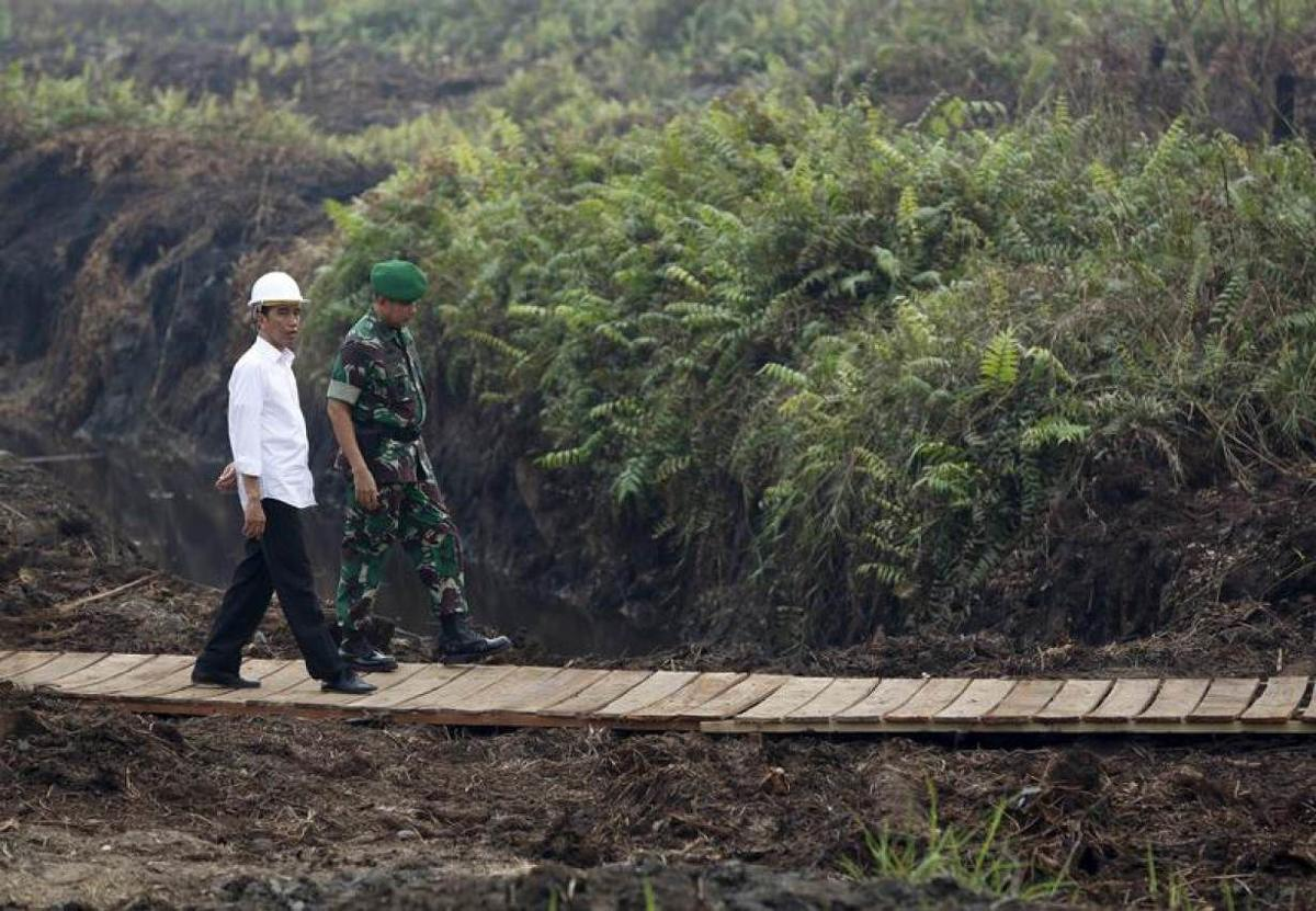 Sumatran forest people adapt ancient health rules for pandemic