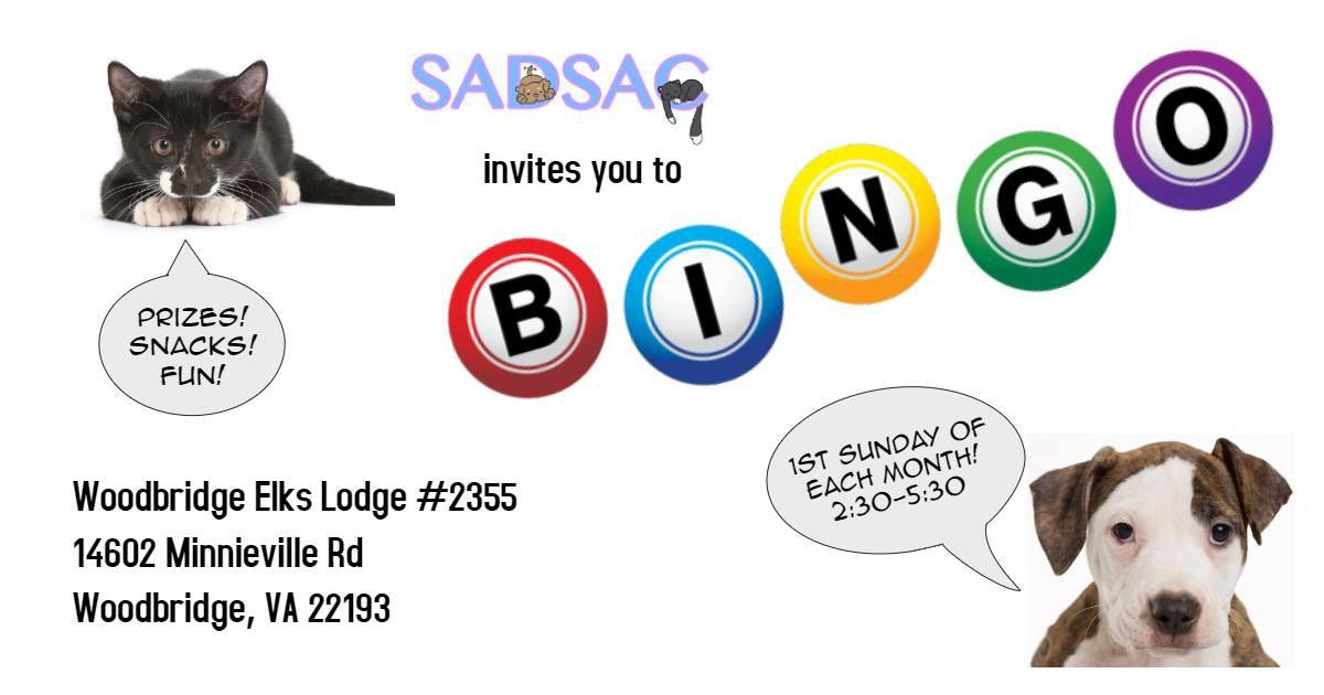 SADSAC monthly bingo