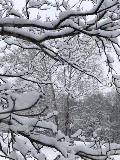 UPDATED: Another winter wallop? Five inches of snow or more expected