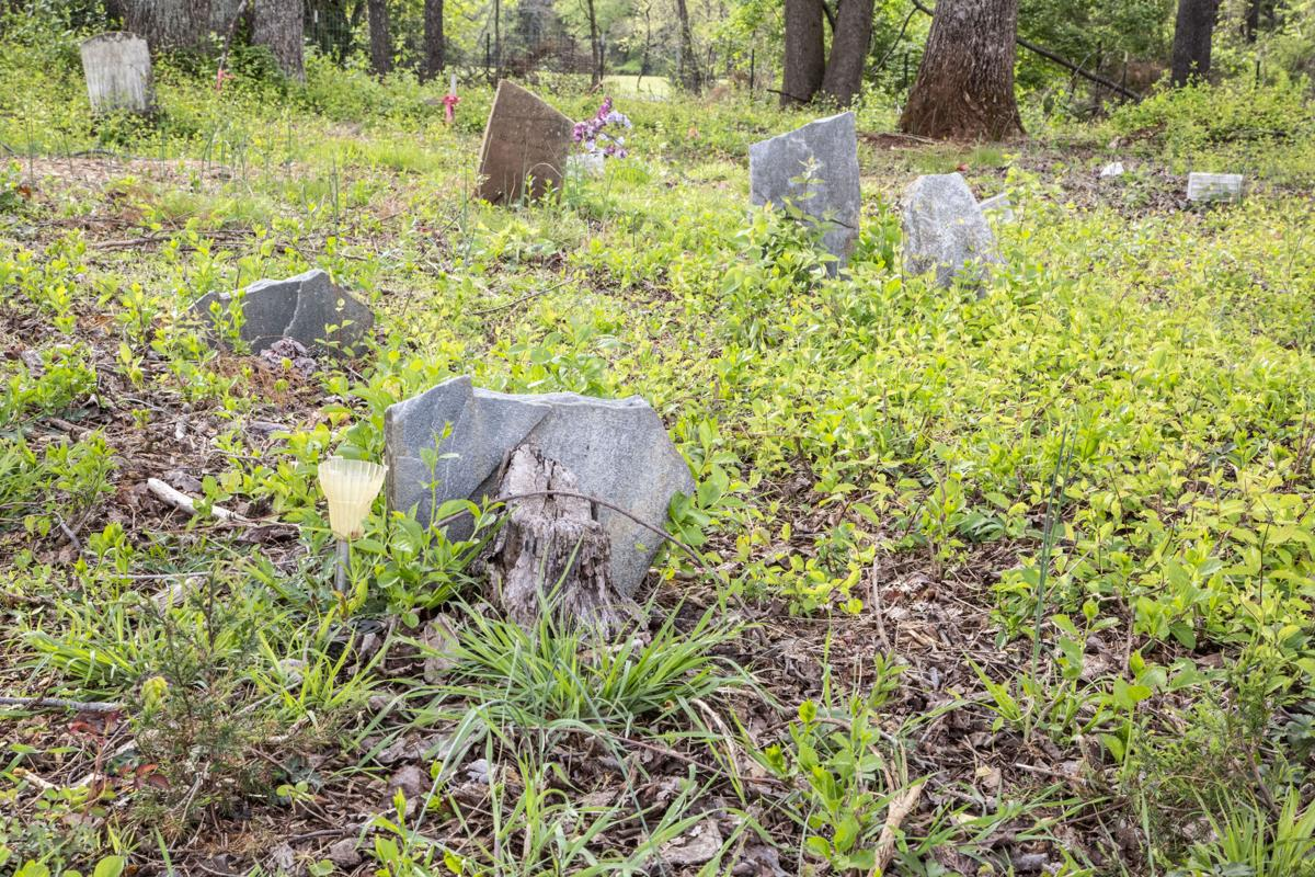 Photo_News_ScottCemetery_graves.jpg