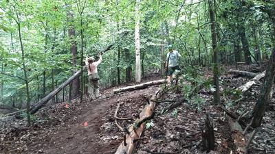 Photo_Lifestyles_OccoquanTrail.jpg people working in the woods forest hiking trail