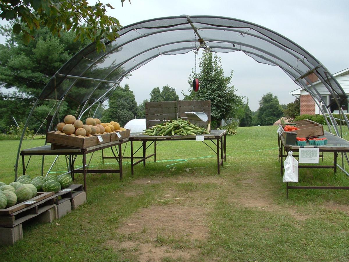 Yankey farms produce stand