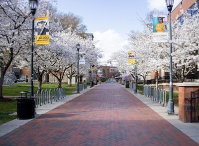 Virginia Commonwealth University campus