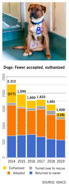 Animal shelter graphic: fewer accepted, fewer euthanized